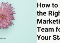 How to Hire the Right Marketing Team for Your Startup: Best 5 Ways To Follow
